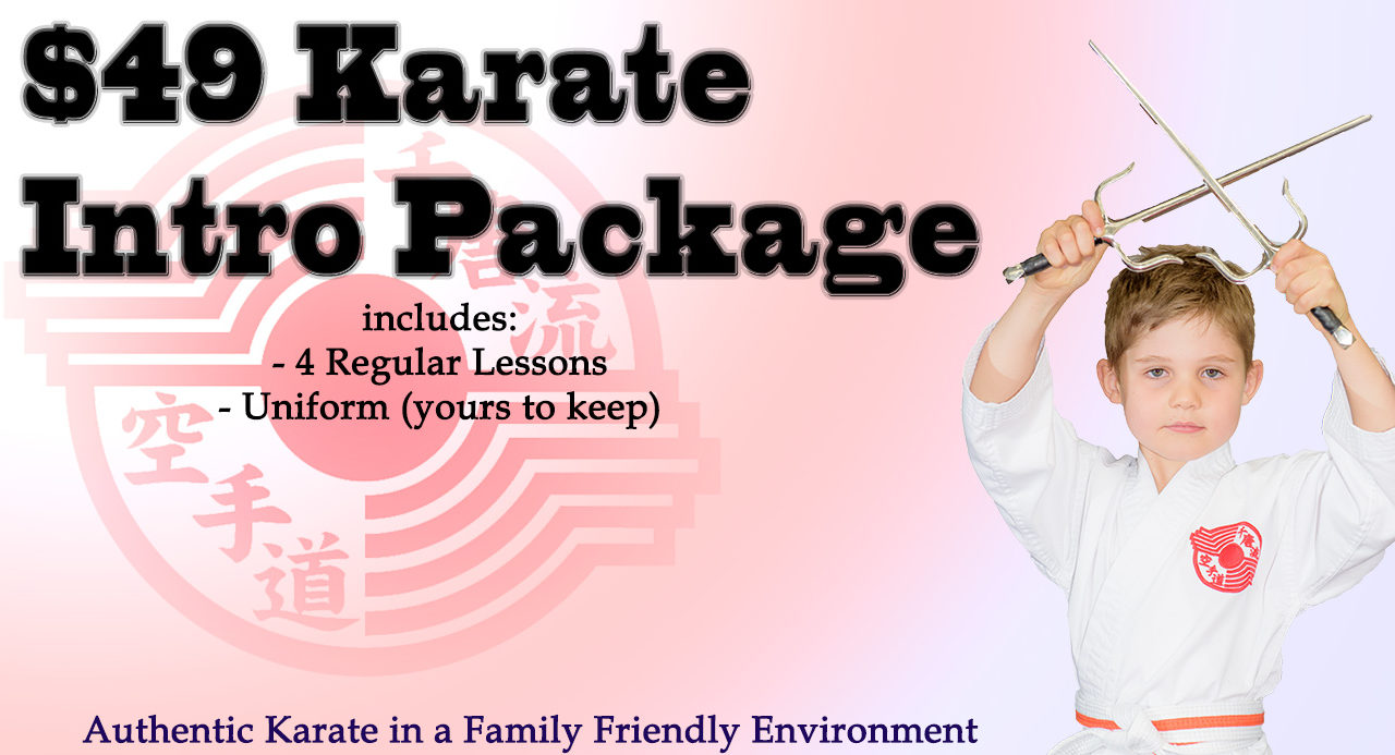 4 Karate Lessons for $49
