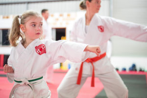 Read more about the article Karate for Families