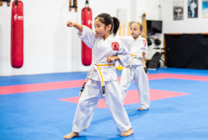 Read more about the article 2019 Little Champions Karateka of the Year