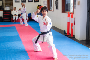 Read more about the article Committed to Black Belt Seminar