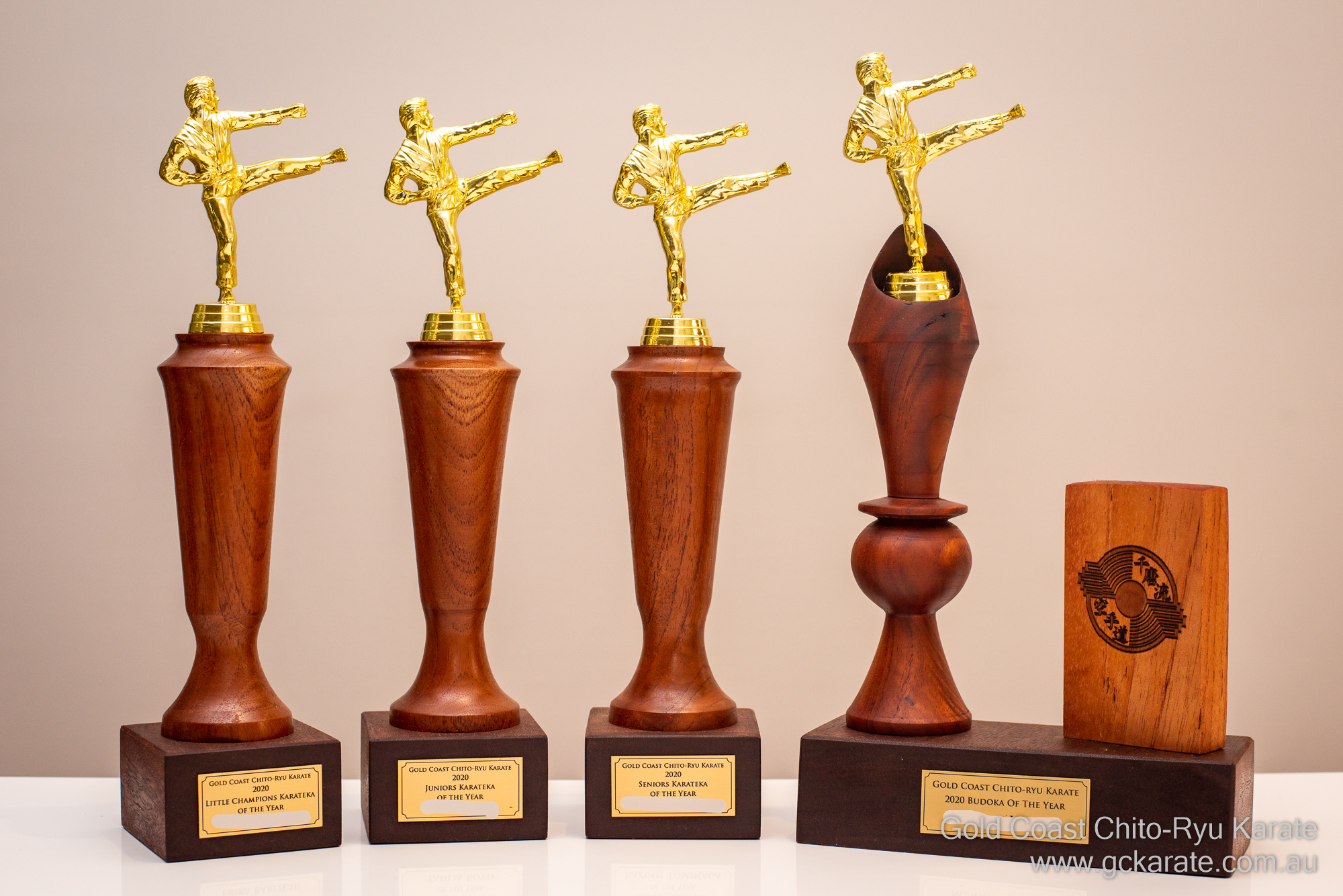You are currently viewing 2020 Annual Award Winners