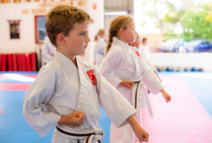 Read more about the article Karate and the importance of etiquette